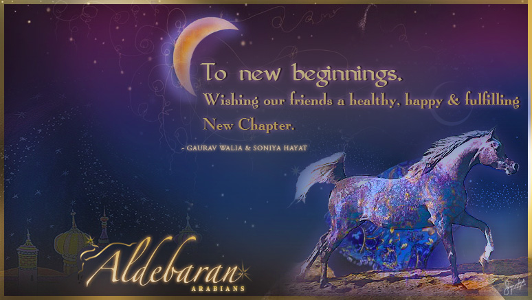 PHOTOGRAPHED & ILLUSTRATED FOR ALDEBARAN BY S. HYET © COPYRIGHT 2011