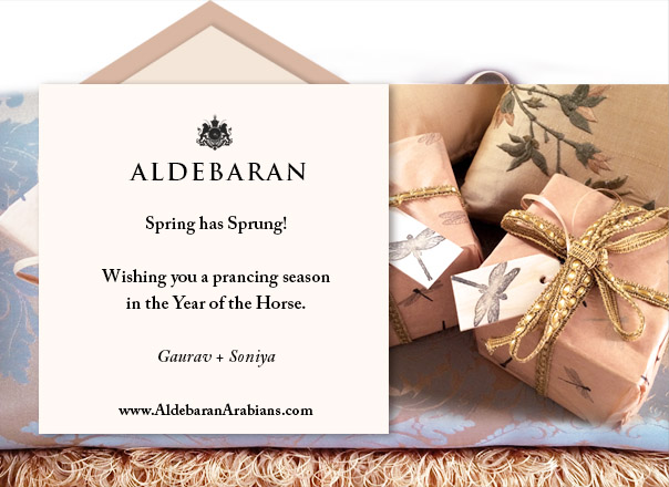 Year of the Horse at Aldebaran Arabians.
